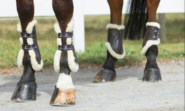 Le Mieux Impact Responsive Tendon Boots