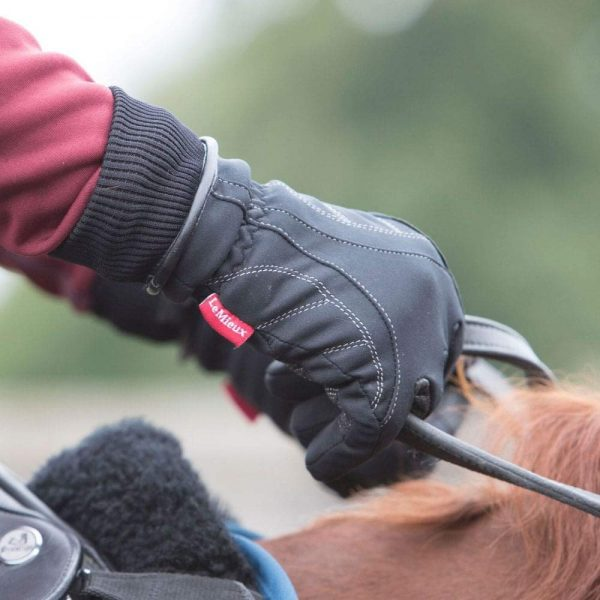 Le Mieux Waterproof Gloves