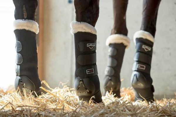 Le Mieux Luxury Stable Protection Boots