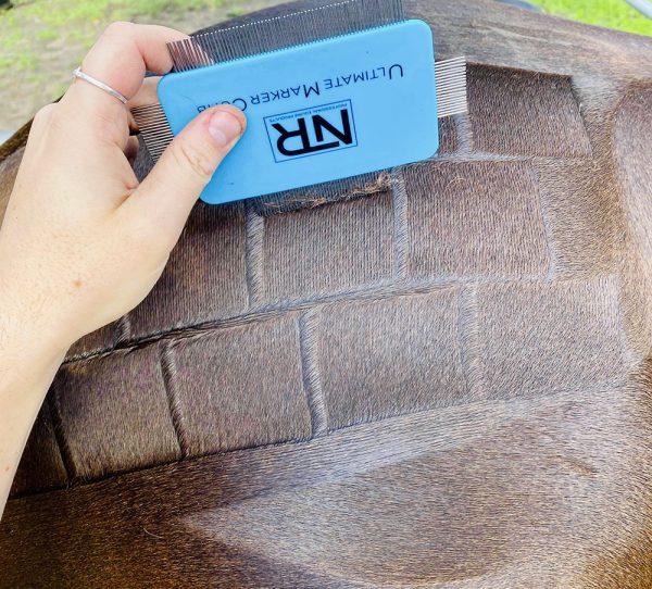 NTR Quarter Marker